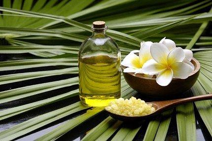 Эфирный масляный концентрат готовится из листьев чайного дерева.