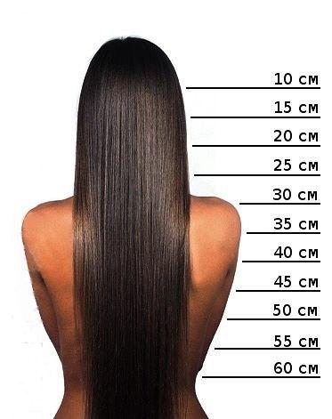 50 см до куда это волосы
