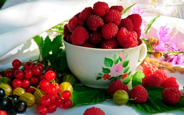 Малина и красная смородина – лучшие представители ягодной семьи, подходящие для приготовления масок