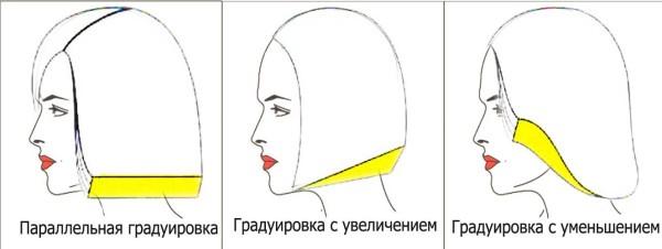 На фото изображены формы причесок в зависимости от площади градуировки.