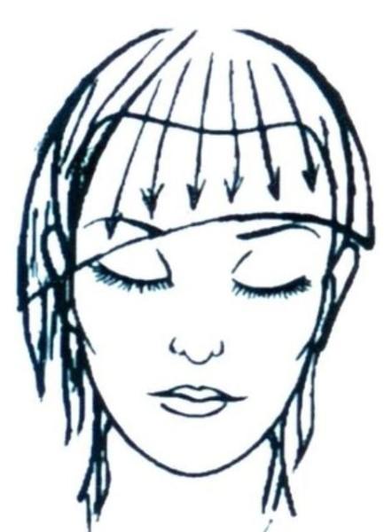 Начинаем дугу от верхней точки уха, заканчиваем серединой уха или мочкой