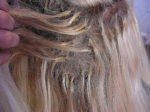 Иметь длинные красивые волосы - мечта большинства девушек