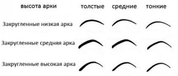 Полукруглые брови могут быть различной ширины и высоты
