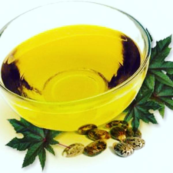 После специальной обработки при изготовлении касторового масла все ядовитые свойства семян клещевины утрачиваются, поэтому оно совсем безопасно.