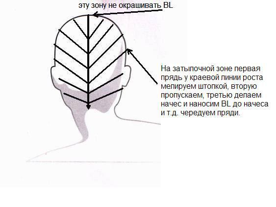 Разбор прядок сзади (BL-
