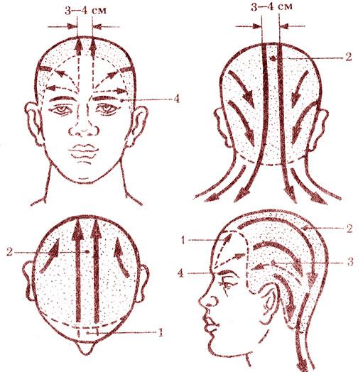 Схема массажа головы