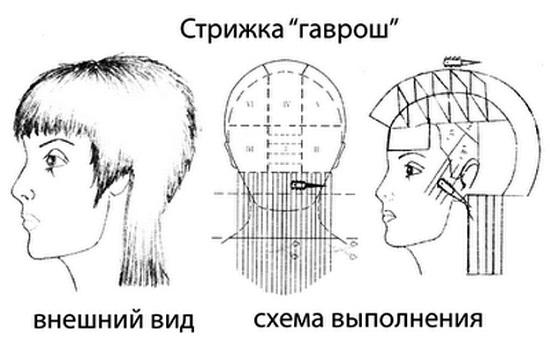 Схема стрижки гаврош