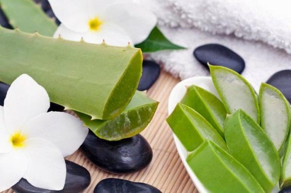 Средства по уходу за бровями могут содержать витамины, сок алоэ и отвары трав