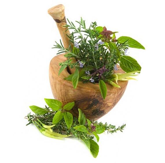 Только натуральный компонент, приготовленный из корня репейника, позволит добиться нужного результата