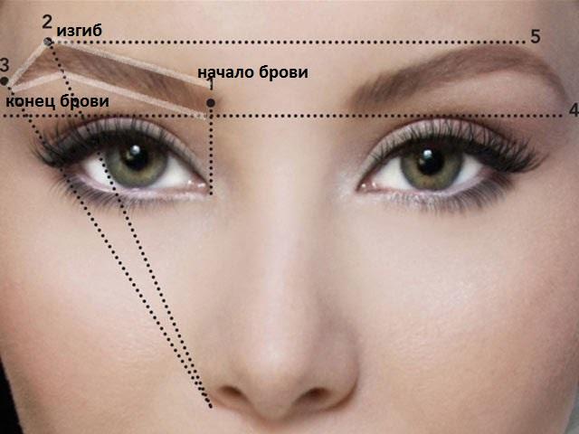 Как нарисовать брови одинаковые