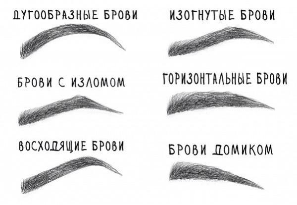 Вы можете выбрать подходящую форму бровей заранее