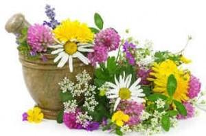 Для отвара используйте лекарственные травы