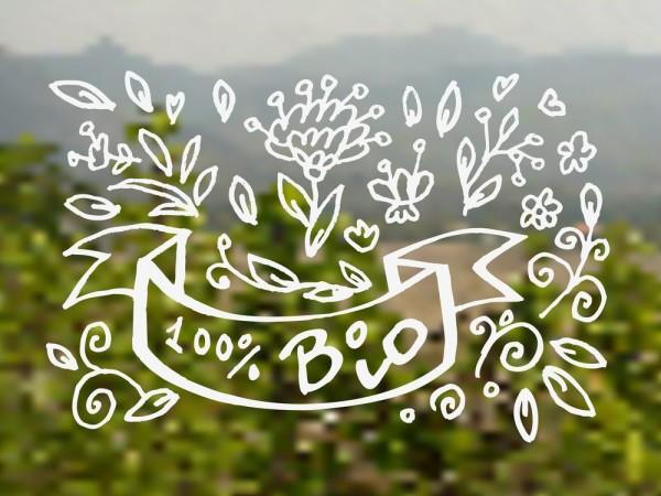 Если вы еще не решили, какой шампунь выбрать, сделайте выбор на органических продуктах, широко представленных зарубежными и отечественными брендами