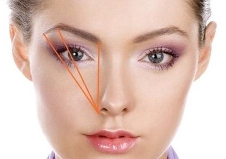 Фото: Геометрия идеальной брови