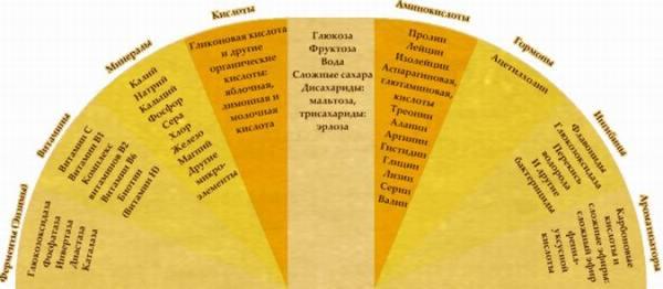 Фото: химический состав пчелиного продукта.