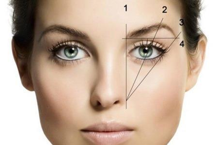 Идеальная длина брови – инструкция создания.