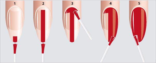 Иллюстрация правильного нанесения цветного покрытия на ногти