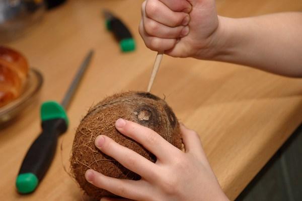 Инструкция по извлечению кокосового молока