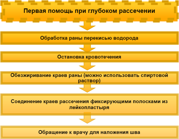 Инструкция по оказанию первой помощи при глубоком рассечении