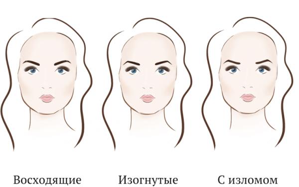 Инструкция по подбору формы бровей для круглого лица