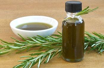 Используйте розмарин и различные продукты из него ответственно – на фото эфирное масло