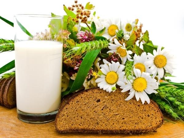 Кефир и черный хлеб – отличная «еда» для локонов