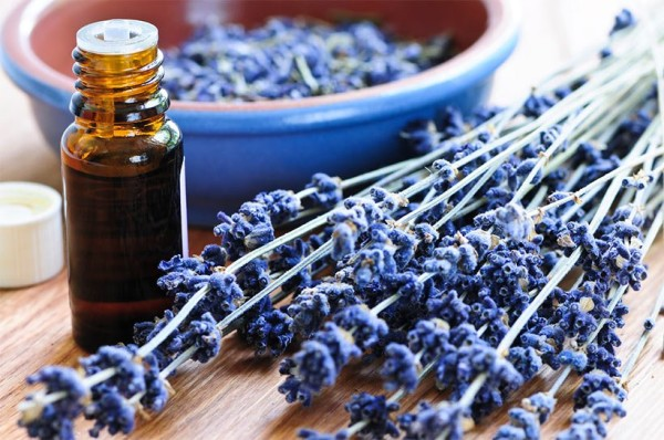 Королевский аромат и высокая эффективность.