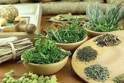 Лекарственные травы следует подбирать исходя из типа волос