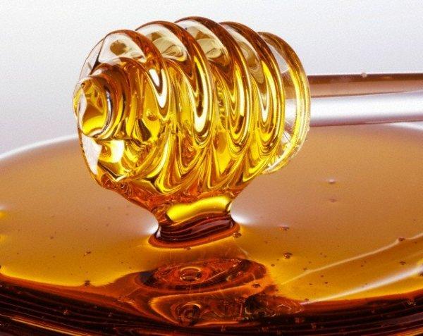 Мед – полезный питательный ингредиент