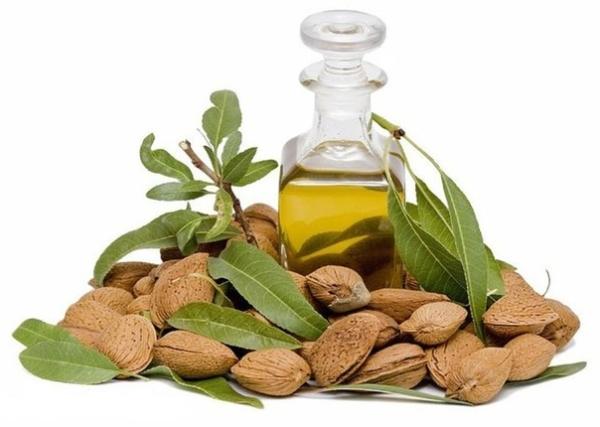 Миндальное масло имеет ценные составляющие для красоты и здоровья локонов