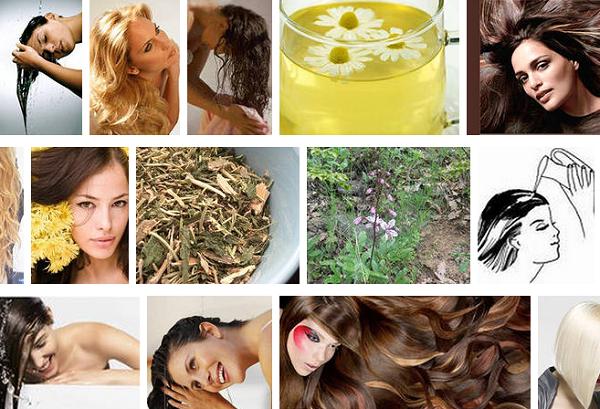 Могут ли от шампуня выпадать волосы – вопрос спорный, а вот ополаскивания травами убережет локоны от выпадения