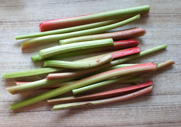 На фото – стебли ревеня, но использовать нужно только сушеное растение