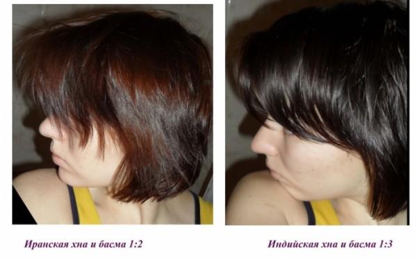 На фото изображены различные эффекты от покраски шевелюры смесью из хны и басмы, которые были взяты в различных частях.