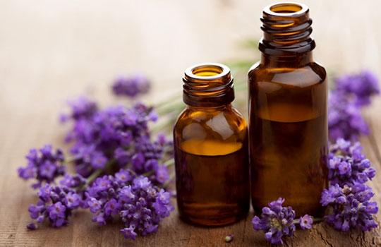 Натуральные масла послужат хорошей заменой многочисленным и дорогостоящим препаратам химического производства для ухода за бровями
