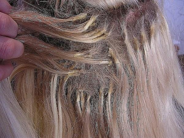 Неквалифицированный подход к процедуре порой влечет за собой такие ужасы наращивания волос, что исправление ошибки горе-мастера будет стоить их владелице большого количества нервов, денег и времени.