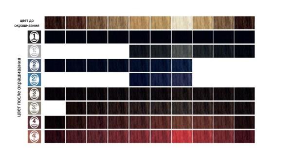 Палитра RefectoCil для тех, кто еще не выбрал подходящий оттенок и не знает, как правильно красить черные брови