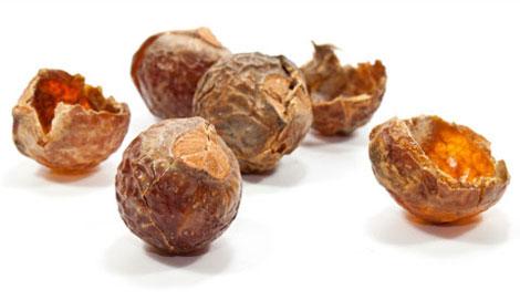 Плоды мыльного дерева – 100% органический продукт