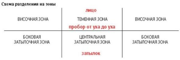 Полезная схема разделения прядей на зоны