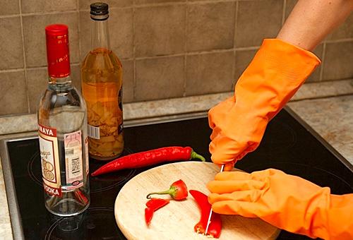 При изготовлении перцовой настойки в домашних условиях необходимо защитить руки резиновыми перчатками.