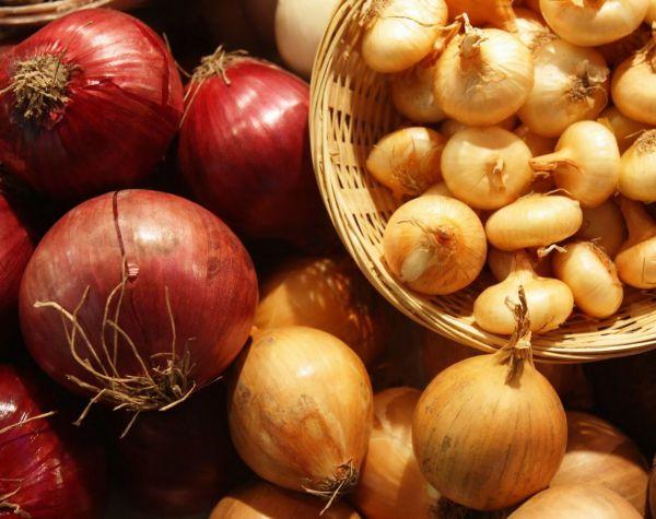 Репчатый лук полезен не только в кулинарии, но и в народной медицине