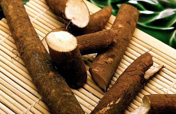 Репейное масло можно приготовить самостоятельно, залив измельченный очищенный корень растительным маслом и оставив средство в темной посуде на 3 недели