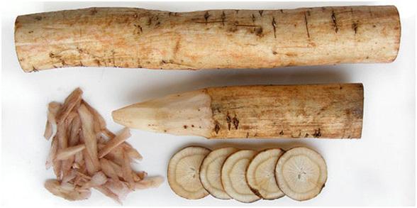 Сок, отвар из корня благотворно воздействует на цвет и густоту волос.
