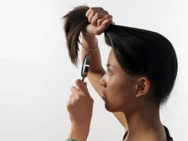 Сухие кончики волос? Масло оливы – решение №1