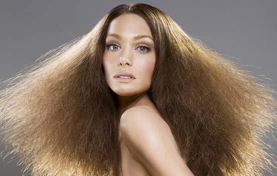 Сухие волосы требуют особого ухода и тщательного выбора средств