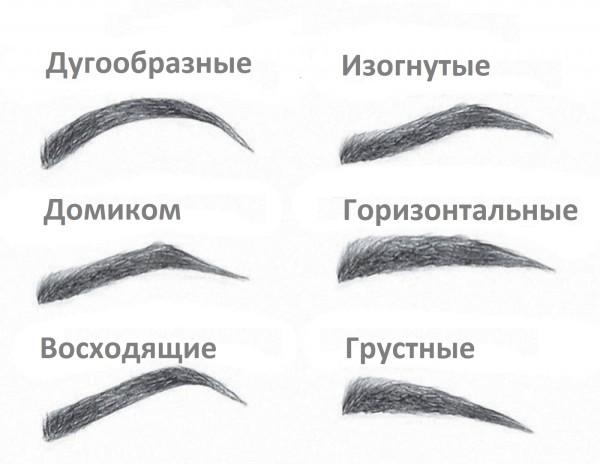 Вот такие бывают женские брови по форме